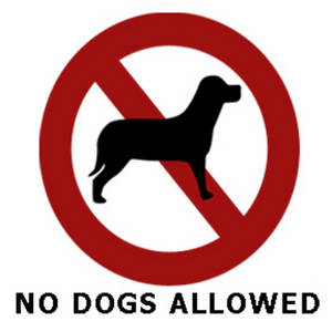 Image result for no dogs sign image